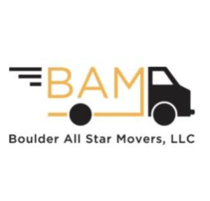 BAM Logo 300x287